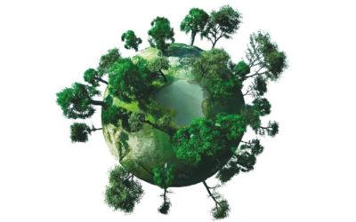 Thema Nachhaltigkeit